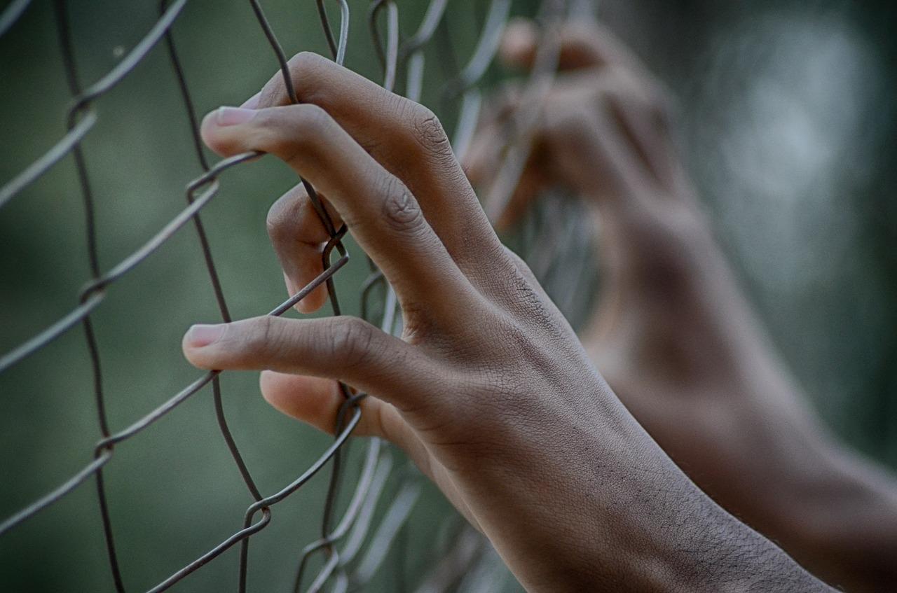 manos apoyadas en un alambrado